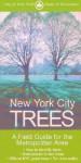 New York City Trees - Edward Sibley Barnard