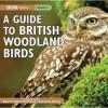 A Guide To British Woodland Birds - Brett Westwood, Stephen Moss, Chris Watson