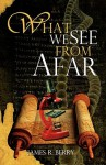 What We See from Afar - James Berry