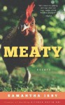 Meaty: Essays by Samantha Irby, Creator of the Blog BitchesGottaEat - Samantha Irby