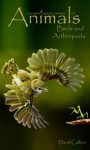 Children's Encyclopedia of Animals: Birds and Arthropods (EDUCATE AND ENTERTAIN SERIES) - David Collins