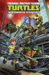 Teenage Mutant Ninja Turtles: New Animated Adventures, Volume 1 - Kenny Byerly, Scott Tipton
