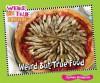 Weird But True Food (Weird But True Science) - Carmen Bredeson