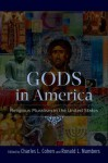 Gods in America: Religious Pluralism in the United States - Charles L. Cohen, Ronald L. Numbers