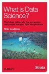What Is Data Science? - Mike Loukides