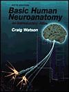 Basic Human Neuroanatomy: An Introductory Atlas - Craig Watson, Craig Hillis