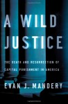 A Wild Justice: The Death and Resurrection of Capital Punishment in America - Evan Mandery