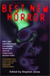 The Mammoth Book of Best New Horror 13 - Stephen Jones, Kelly Link, Dennis Etchison, Tanith Lee, Ramsey Campbell, Muriel Gray, Joel Lane, Lynda E. Rucker, Glen Hirshberg, Paul J. McAuley, Michael Chislett, Richard A. Lupoff, Chico Kidd, Graham Joyce, Elizabeth Hand, Douglas Smith, Thomas Ligotti, Donald R. Burl