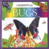 A Kaleidopops Book: Bugs - Ruth Martin