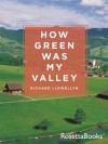 How Green Was My Valley (Books into Film) - Richard Llewellyn