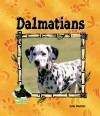Dalmatians - Julie Murray