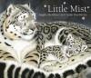 Little Mist - Angela McAllister, Sarah Fox-Davies