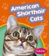 American Shorthair Cats - Wendy Perkins, Gail Saunders-Smith