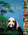 The Illustrated Atlas of Wildlife - Channa Bambaradeniya, Joshua Ginsberg, Dwight Holing, Susan Lumpkin, Cinthya Flores
