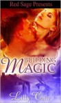 Building Magic - Lilly Cain