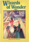 Wizards of Wonder - Megan Stine, Henry William Stine