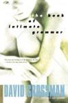 The Book of Intimate Grammar: A Novel - David Grossman, Betsy Rosenberg