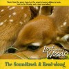 Lost in the Woods: The Soundtrack & Read-Along - Carl R. Sams II, Jean Stoick