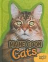 Maine Coon Cats - Joanne Mattern