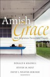 Amish Grace: How Forgiveness Transcended Tragedy - Donald B. Kraybill, Steven M. Nolt, David Weaver-Zercher