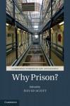 Why Prison? - David Scott