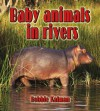 Baby Animals in Rivers - Bobbie Kalman