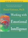 Working with Emotional Intelligence (MP3 Book) - Daniel Goleman