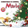 Marley: Christmas Is Coming, Marley - John Grogan, Richard Cowdrey, Michael Koelsch