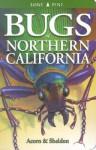Bugs of Northern California - John Acorn, Ian Sheldon