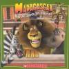 Madagascar - Michael Anthony Steele