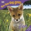 The Fox - Angela Royston