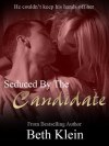 Part 4: Seduced By The Candidate (Erotic Romance Series) - Beth Klein