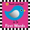 Hello Baby: My First Words Touch and Feel - Roger Priddy