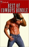Best of Cowboys Bundle - Crystal Green, Vicki Lewis Thompson, Judy Christenberry, Shirley Rogers, Christine Wenger, Barbara White Daille