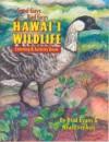 Good Guys, Bad Guys, Hawai'i Wildlife - Brad Evans