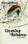 Cleaning a Rainbow - Gary Gildner