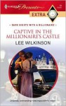 Captive in the Millionaire's Castle - Lee Wilkinson