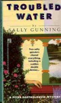 Troubled Water - Sally Gunning