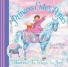 Shimmer the Magic Ice Pony (Princess Evie's Ponies) - Sarah KilBride, Sophie Tilley