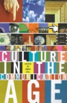 Culture in the Communication Age - James Lull