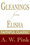 Gleanings from Elisha: His Life and Miracles (Arthur Pink Collection) - Arthur W. Pink