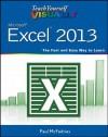 Teach Yourself VISUALLY Excel 2013 (Teach Yourself VISUALLY (Tech)) - Paul McFedries