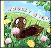 WOOLLY BEAR (A Fuzzy Chunky Book) - Annie Ingle
