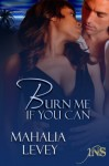 Burn Me if You Can - Mahalia Levey