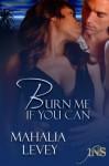 Burn Me if You Can - Mahalia Levey