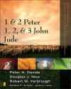 1 and 2 Peter, Jude, 1,2, and 3 John (Zondervan Illustrated Bible Backgrounds Commentary) - Clinton E. Arnold