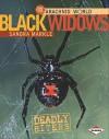 Black Widows: Deadly Biters - Sandra Markle
