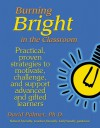 Burning Bright in the Classroom: Practical, Proven Strategies to Motivate, Challenge, and Support Advanced and Gifted Learners - David Palmer