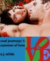Summer of Love - A.J. Wilde