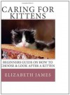 Caring for Kittens, beginners guide on How to Care for a Kitten - Elizabeth James